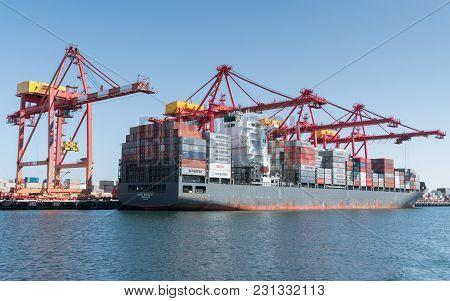 Global Trade Logistics, Containership