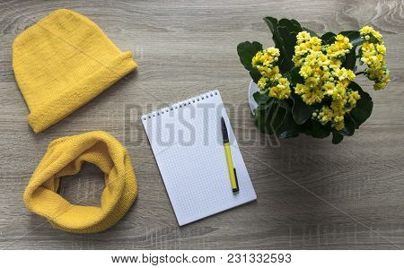 Background Tree Flower Calandiva Yellow Snod Scarf Cap With Spell Knitted Knitting Needles Facial Sm