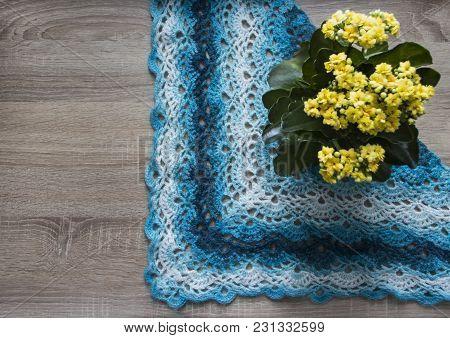 Background Tree Flower Kalandiva Yellow Bactus Shawl Crocheted Azure Blue Blue Sectional Dyeing Moha