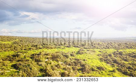 Aerial View Of A Green Landscape In Sunny Day. Nature Background