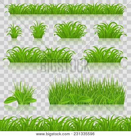 Big Grass Borders Set Isolated On Transparent Background