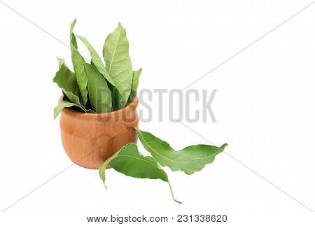 Dried Aromatic Bay Leaves In A Wooden Bowl Isolated On White. Photo Of Laurel Bay Harvest For Eco Co