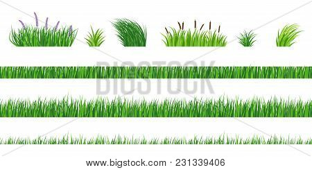 Horizontal Seamless Elements Of Green Grass Of Different Degree Of Germination. Strizhenaya And Fres