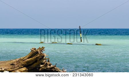 A Stump And A Sandbar At The Beach With Focus On Foreground