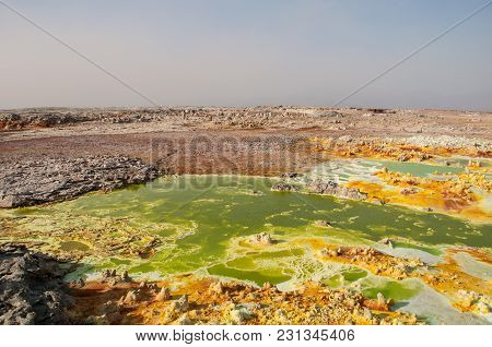 Huge Green Field With Yellow Spots Of Lava Sulfuric Volcanoes, The Desert Of Danakil, The Afar Basin