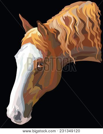 Colored Portrait Of Dark Palomino Horse. Horse Head With Long Mane In Profile Isolated Vector Illust
