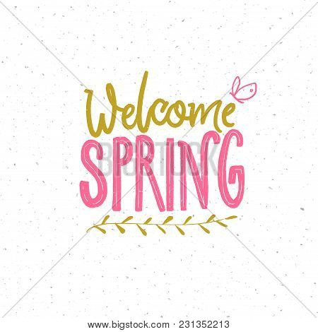 Welcome Spring. Typography Banner With Spring Greeting. Hand Lettering And Small Butterfly. Pink And
