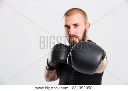 Closeup photo of muscular man with tattoos on his arms punching in boxing gloves isolated over white background