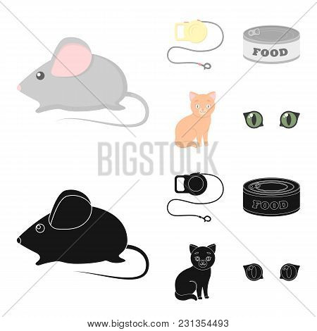 Mouse, Pet Leash, Pet Food, Kitten. Cat Set Collection Icons In Cartoon, Black Style Vector Symbol S