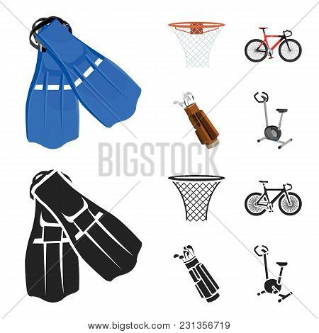 Flippers For Swimming, Basketball Basket, Net, Racing Holograph, Golf Bag. Sport Set Collection Icon