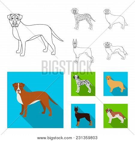 Dog Breeds Outline, Flat Icons In Set Collection For Design.dog Pet Vector Symbol Stock  Illustratio