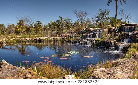Pond With Water Lilies And A Waterfall Flows Over Rocks In Hawaii