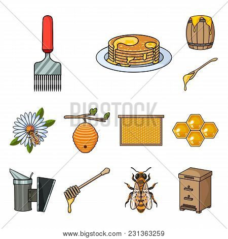 Apiary And Beekeeping Cartoon Icons In Set Collection For Design.equipment And Production Of Honey V