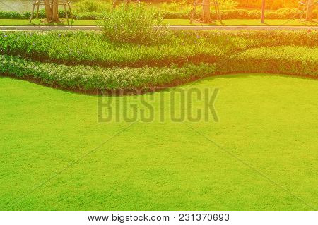 The Morning Sun Into The Front Lawn, Landscape, Officially, The Front Lawn Is Beautifully Designed G