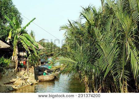 View On A River With Traditional Vietnamese Round Boats Between Coconut Palm Trees. Hoi An, Vietnam.