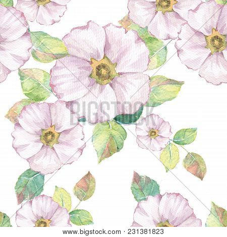 Delicate White Flowers. Hand Drawn Watercolor Floral Seamless Pattern 1