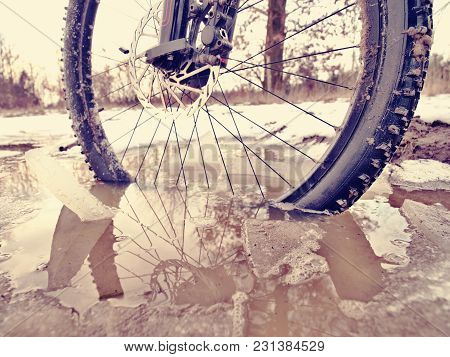 Front Wheel Of Mtb Blocked In Ivy Pool, Extreme Winter Cycling In Winter Landscape. Broken Piece Of