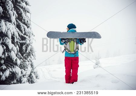 Snowboarder Girl Standing Hold Snowboard In The Snow Forest