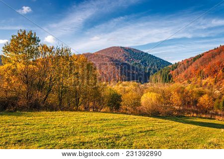 A Landscape In Autumn Colors, Slovakia, Europe.