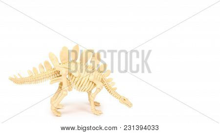 Plastic Toy Animal Dinosaur Skeleton Isolated On White Background. Copy Space, Template.