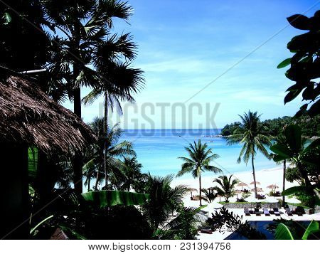 Tropical Beach With Palm Trees And Swimming Pool