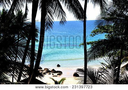 Amazing Tropical Beach With Palm Trees And Blue Sea