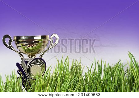 Gold Sports Cup, The Award For Achievements