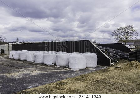 Stacked Like A Pyramid, Round Bales Of Hay And Silage Wrapped In A White Membrane. Food For Cows   .