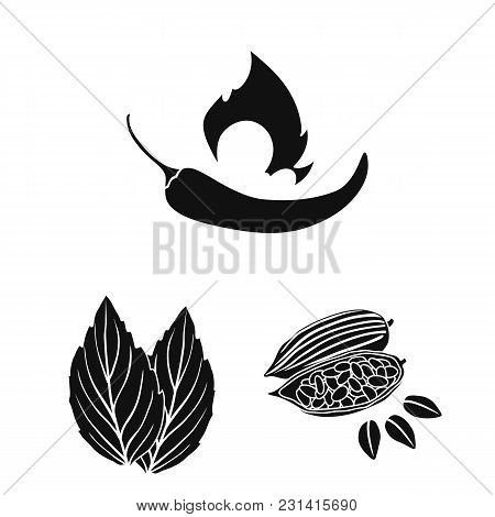 Herb And Spices Black Icons In Set Collection For Design.different Kinds Of Seasonings Vector Symbol