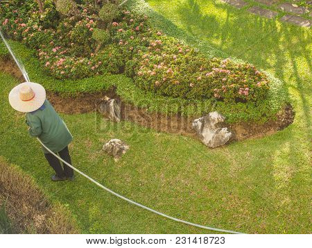 Woman Watering Plants With Water From A Hose.