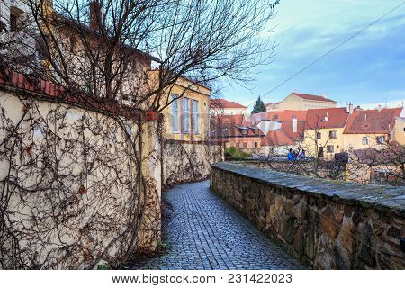 Observation Deck With Ivy-covered Wall In The Old Town Of Znojmo, Czech Republic, South Moravia, Eur