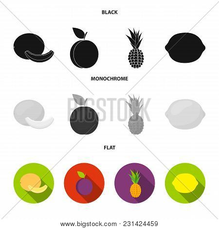Melon, Plum, Pineapple, Lemon.fruits Set Collection Icons In Black, Flat, Monochrome Style Vector Sy