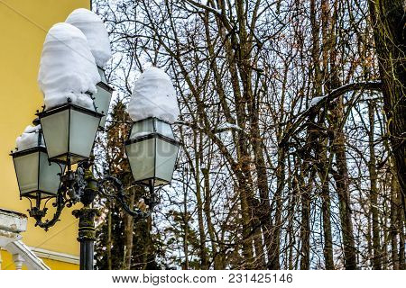 City Lantern With Snow And Trees View For Posters, Prints, Calendars, Design. Lamppost In Winter Par