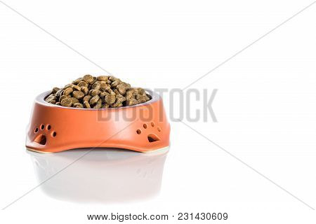 Ceramic Bowl With Dried Pet Food Isolated On White Background.