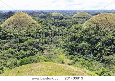 Beautiful Chocolate Hills At Bohol Island, Philippines