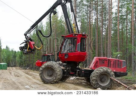 Harvester Machine Working In A Forest Leaving For The Forest Track. Wood Industry In Russia