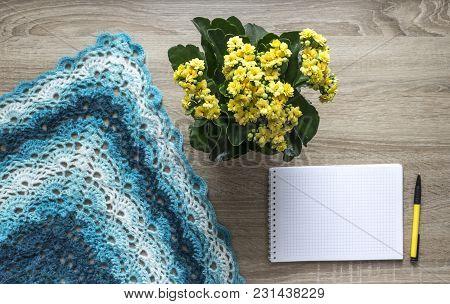 Background Tree Yellow Flower Kalandi Blue Sectional Dyeing Scarf Bactus Crocheted Mohair Merino Woo