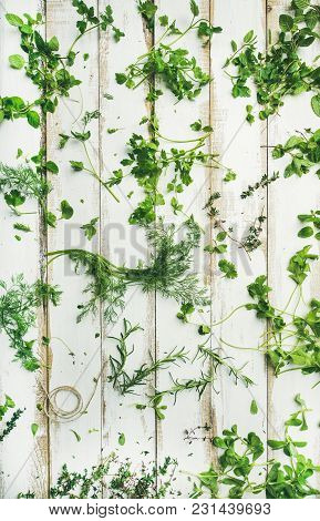 Flat-lay Of Various Fresh Green Herbs. Parsley, Mint, Dill, Cilantro, Rosemary, Thyme Over White Woo