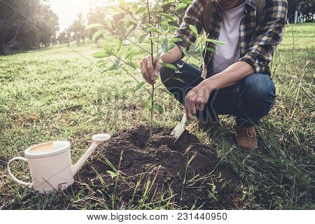 Young Man Planting The Tree While Watering A Tree Working In The Garden As Save World Concept, Natur
