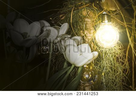White Tulips Near Glowing Lamps Hanging On A Branch, Wooden Pillar Decoration