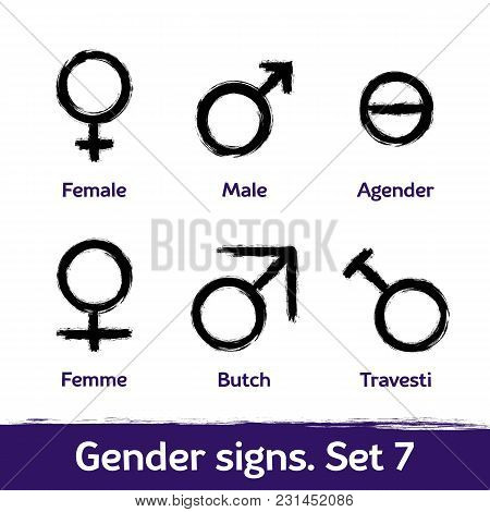Gender Signs Drawn With Brush. Lgbt Icons For Sex Diversity And Equality Of Human Rights And Self-de