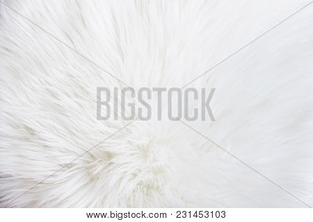 White Fur Texture Background. Surface Abstract Fabric Pattern At The White Fabric Carpet At The Floo