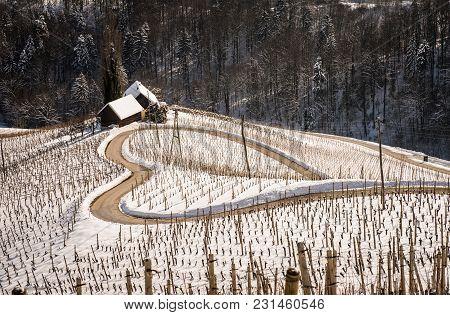 Famous Heart shaped wine road in Slovenia in winter, Heart form - Herzerl Strasse, vineyards in winter, Spicnik,Styria,Slovenia. poster
