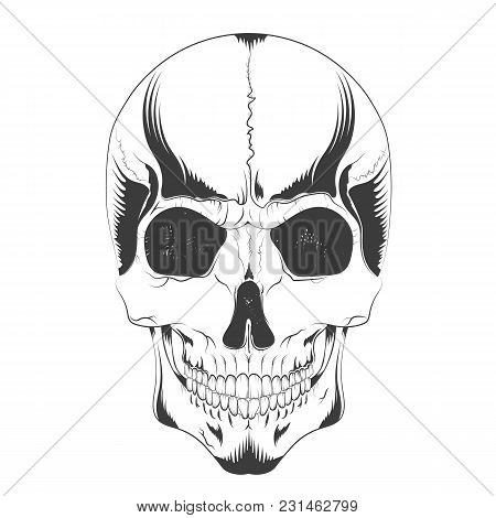 Vector Illustration Of A Human Skull Sketch In Gothic Style. Design T-shirts, Covers, Posters, Tatto
