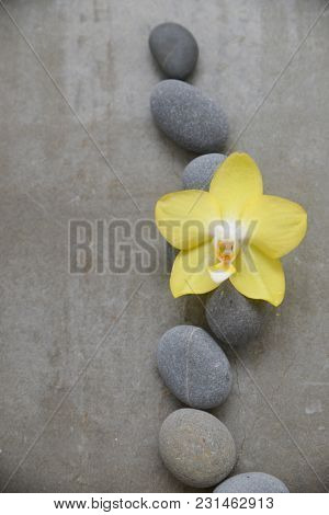 pile of gray stones and yellow orchid on gray background