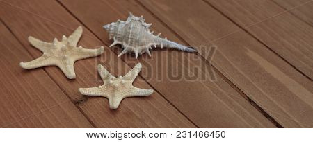 Starfish And Seashells, Maritime Nautical Decoration Over Brown Wooden Background With Copy Space. B