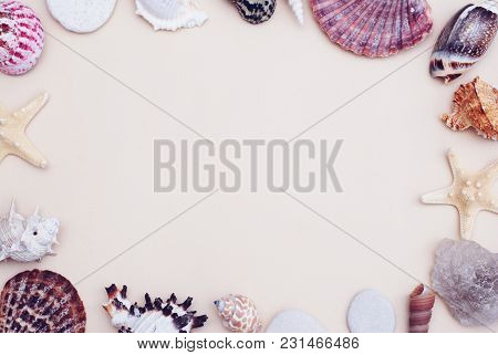 Sea Shells Frame On Neutral Ivory Backgroundwith Copy Space For Text. Nautical Vacation Concept.