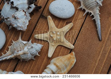 Starfish And Seashells, Maritime Nautical Decoration Over Brown Wooden Background With Copy Space. S