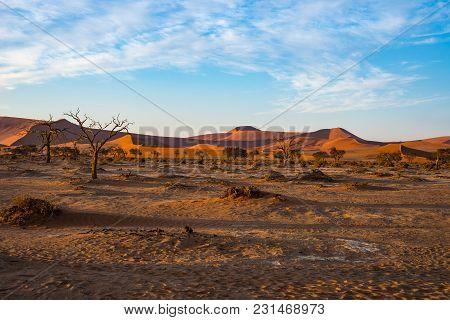 Sand Dunes Namib Desert, Salt Flat, Roadtrip In The Wonderful Namib Naukluft National Park, Travel D