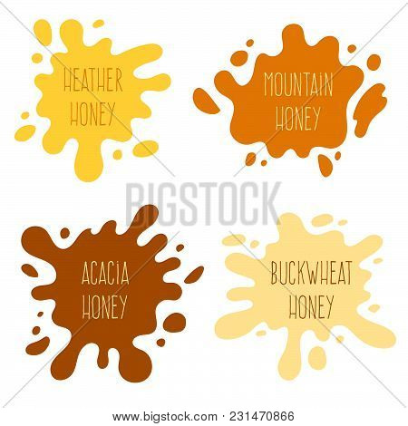 Honey Splash Set Of Labels. Splashes And Drops Collection. Vector Illustration